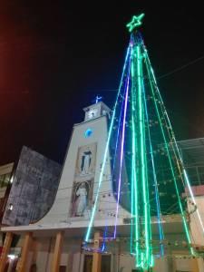 arbol-de-navidad-que-ilumina-iglesia-matriz